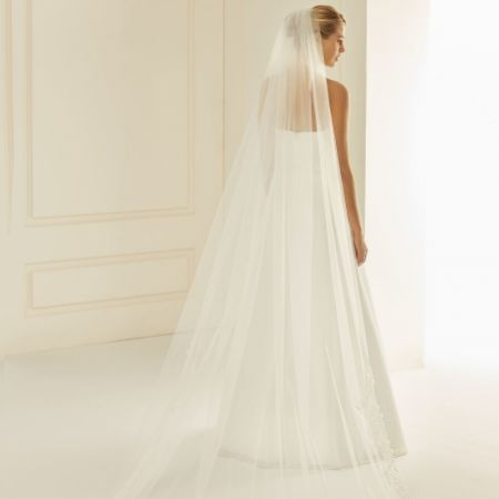Bianco Single Tier Cut Edge Cathedral Veil with Floral Lace Train S235