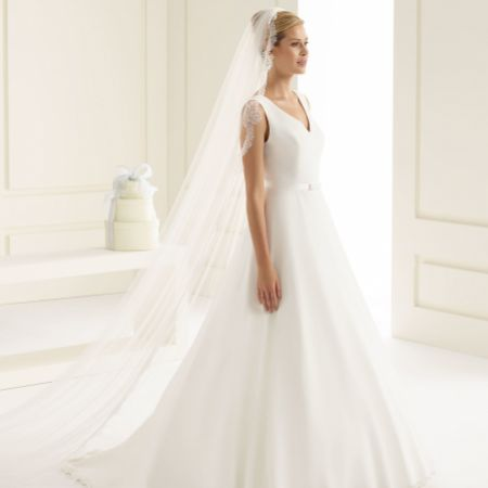 Bianco Single Tier Fine Lace Edge Cathedral Veil S161