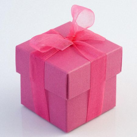 Fuchsia Silk Favour Box - Pack of 10