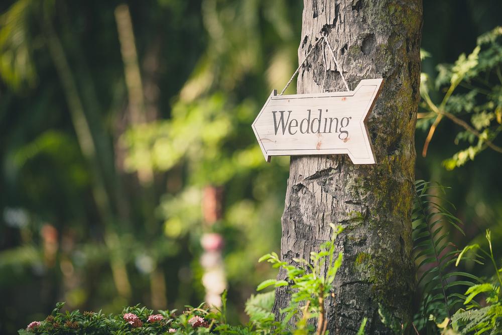 Eco Wedding Venue Tips