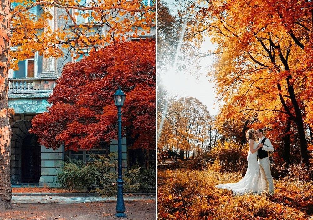 autumnal-scenery